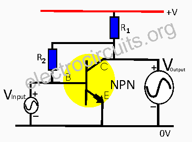 npn transistor as voltage or current amplifier